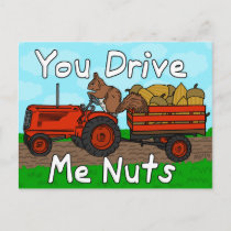 Funny You Drive Me Nuts Squirrel Pun Valentine's Holiday Postcard