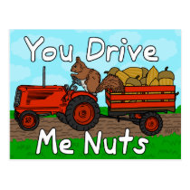 Funny You Drive Me Nuts Squirrel Pun Valentine's Postcard