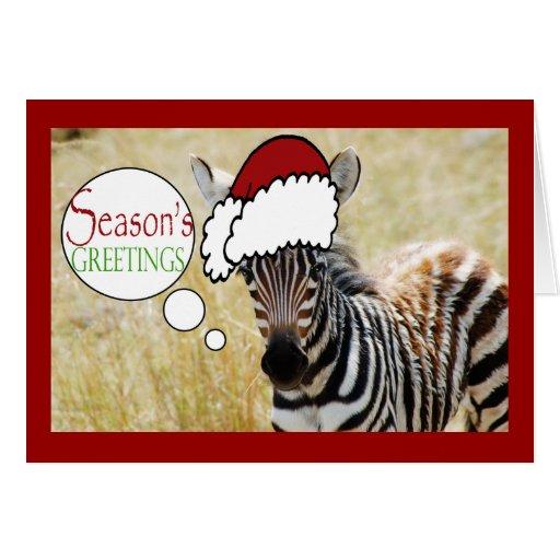 Funny Zebra Christmas Greeting Greeting Card