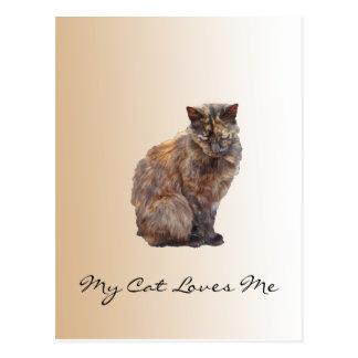 Fur Coat Cat Postcard