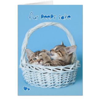 Fur Peeps Sake Two twin Easter Kittens Fighting Card