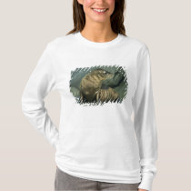 Fur Seal, Arctocephalus galapagoensis), young T-Shirt