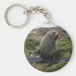 Fur Seal Basic Round Button Keychain