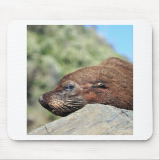 Fur seal New Zealand Mouse Pad
