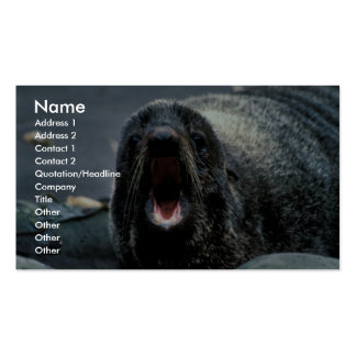 Fur Seal Portrait Double-Sided Standard Business Cards (Pack Of 100)