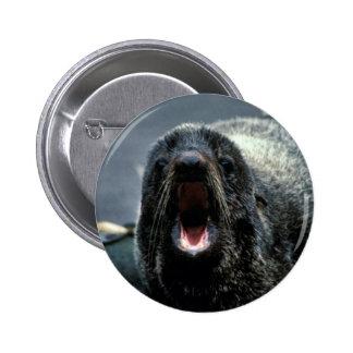 Fur Seal Portrait Pinback Buttons