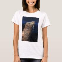 Fur seal sunbathing T-Shirt