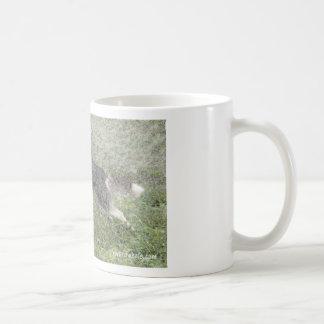 Fur Wheel Drive Classic White Coffee Mug