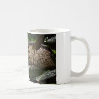 Furcifer oustaleti coffee mug