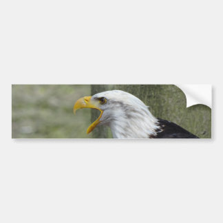 Furia Eagle calvo Pegatina Para Auto