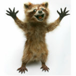 "FURIOUSLY HAPPY RACCOON CUTOUT<br><div class=""desc"">A tiny Rory Raccoon statue for your desk.   He is always happy to see you and will never leave you hanging.</div>"