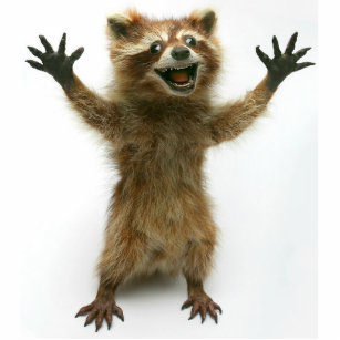 FURIOUSLY HAPPY RACCOON CUTOUT