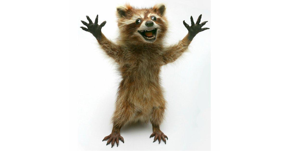 furiously happy raccoon cutout zazzle com