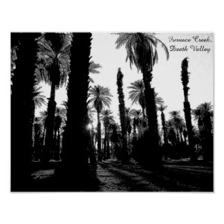 Furnace Creek Palm Oasis, Death Valley, CA Poster