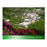 Furnas - Azores Post Card
