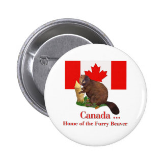 Furry Beaver 2 Inch Round Button