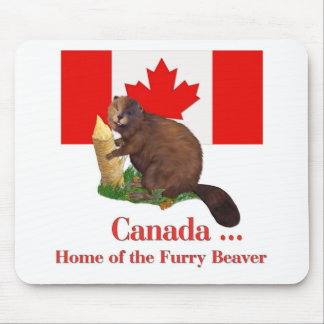 Furry Beaver Mouse Mats