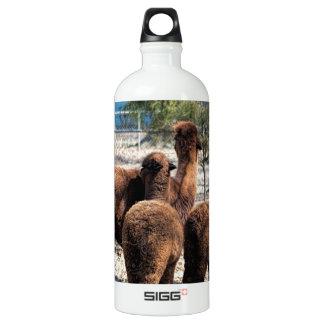 Furry Brown Alpaca Behinds Water Bottle