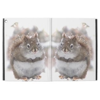 Furry Brown Squirrels iPad Pro Case