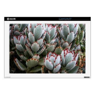 Furry Cacti Laptop Skin