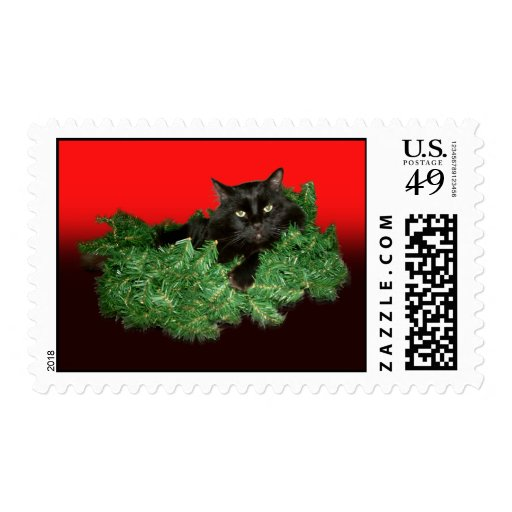 Furry Cat Postage Stamps