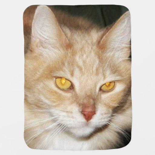 Furry Feline Baby Blanket