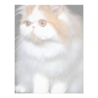 Furry Feline Letterhead
