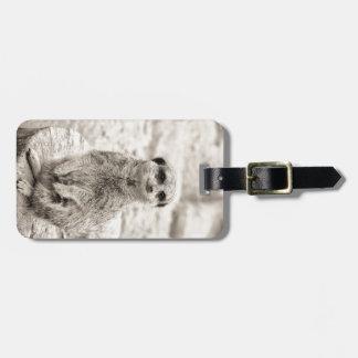 Furry Little Meerkat Bag Tag