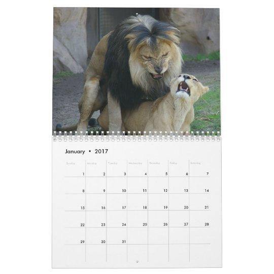 Furry Love Calendar Animal Mating