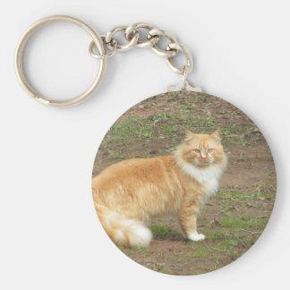 Furry Orange and White Cat Basic Round Button Keychain
