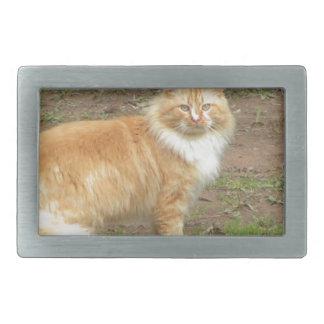 Furry Orange and White Cat Rectangular Belt Buckle