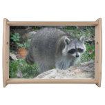 Furry Raccoon Photo Serving Platter