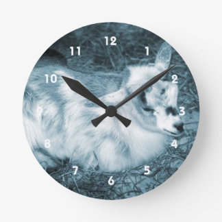 Furry small blue goat doeling baby right round clock