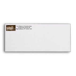 Furry small goat doeling baby right envelope