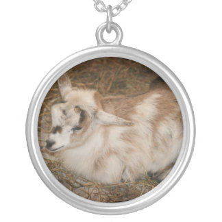 Furry small goat doeling baby round pendant necklace
