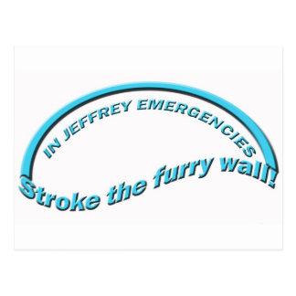 Furry Wall Postcard