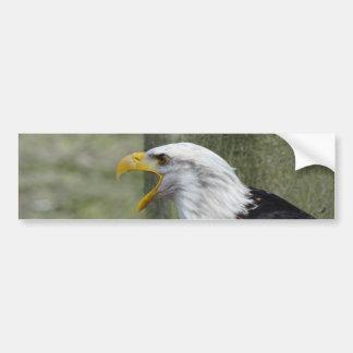 Fury Bald Eagle Bumper Sticker