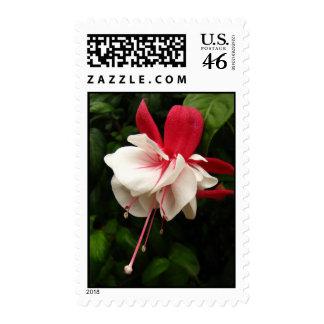 Fuschia Blossom Postage