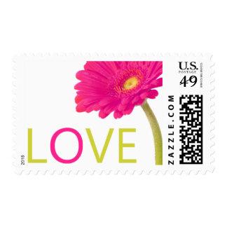 Fuschia Daisy Gerbera Love Stamps