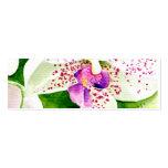 Fuschia Orchid Profile Card Business Card Templates
