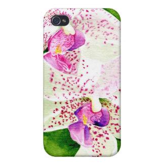 Fuschia Orchids iPhone 4 Cover