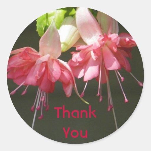 Fuschia rosado le agradece los pegatinas