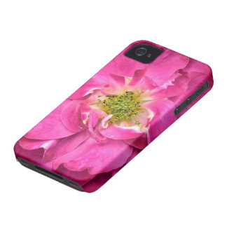 Fuschia Rose, Flower Petals, Stamens, Pink Flowers Case-Mate iPhone 4 Cases