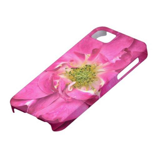 Fuschia subió, los pétalos de la flor, estambres,  iPhone 5 Case-Mate funda