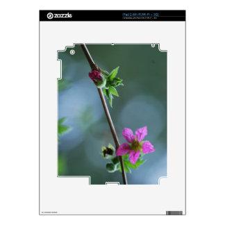 Fuschia Wildflower Decal For iPad 2