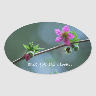 Fuschia Wildflower Oval Sticker