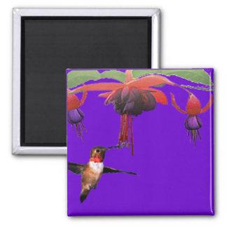 Fushia and Hummingbird 2 Inch Square Magnet
