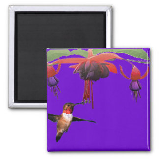 Fushia and Hummingbird Refrigerator Magnets