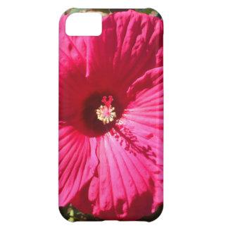 Fushia Flower Cover For iPhone 5C