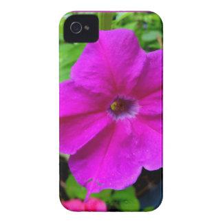 Fushia petunias by SHARLES iPhone 4 Case-Mate Cases